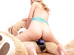 Brett Rossi Copulates A Teddy Bear